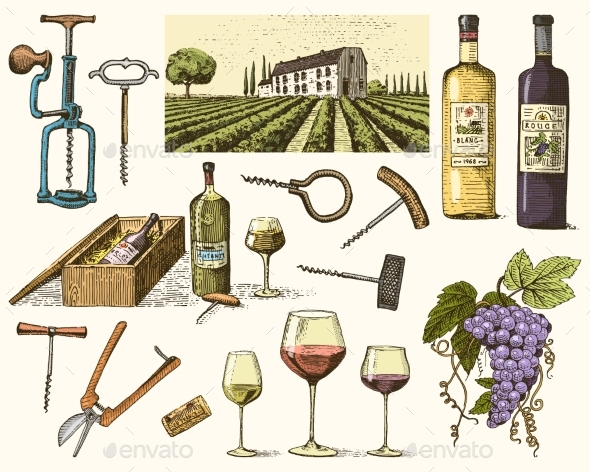 Wine Harvest Products - Food Objects