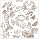 Seafood and Fresh Fish Sketch Icons Vector Set