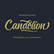 Candelion Script Font - GraphicRiver Item for Sale