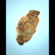 Photorealistic Delicious Chocolate Croissant