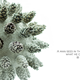 Pine Cones - VideoHive Item for Sale