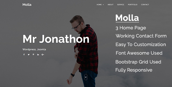 Image of Molla - Creative Portfolio Template