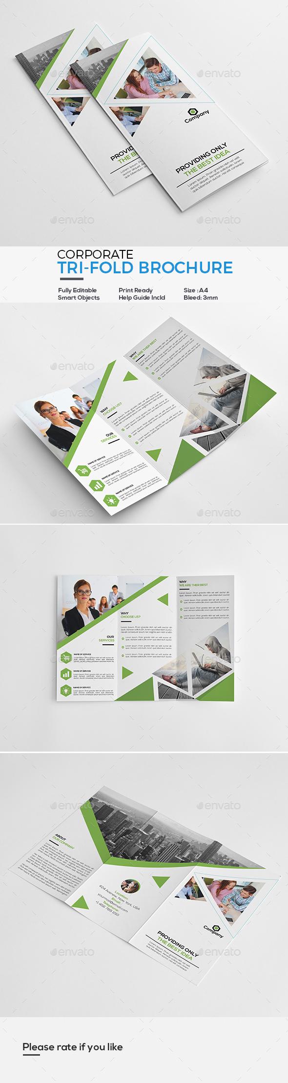 GraphicRiver Corporate Tri-Fold Brochure 21078526