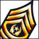 US Army Rank Insignia Badges