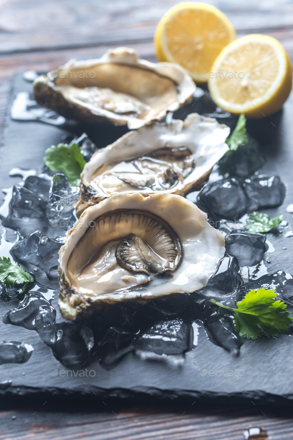Oysters - Stock Photo - Images