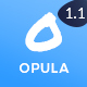 Opula - Business, Finance, Agency Template