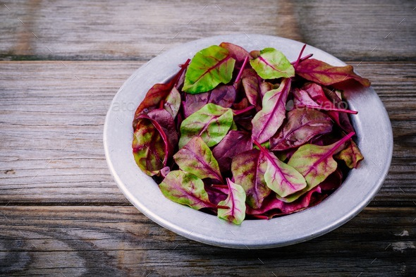 Fresh organic raw leaves of lettuce beets for salad on a wooden  background. - Stock Photo - Images