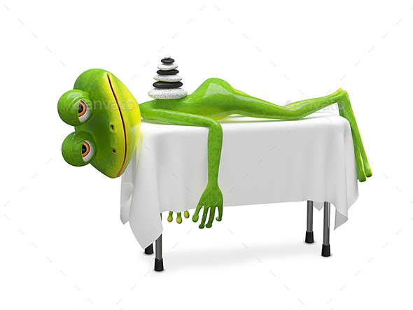 GraphicRiver 3D Illustration Frog on SPA Procedure 21081748