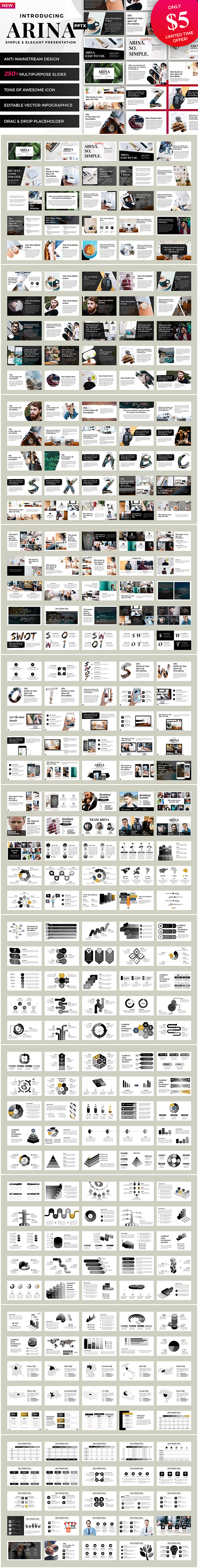 GraphicRiver Arina Powerpoint 21083771