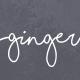 Ginger: A Modern Multi-Purpose Restaurant WordPress Theme