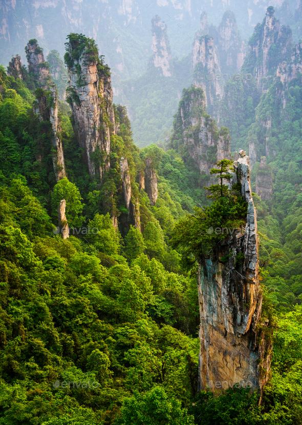 Zhangjiajie National forest park at sunset, Wulingyuan, Hunan, China - Stock Photo - Images