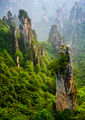 Zhangjiajie National forest park at sunset, Wulingyuan, Hunan, China - PhotoDune Item for Sale