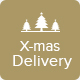 X-mas Delivery - Christmas Delivery Offer Email Template PSD