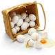 don't put all your eggs in one basket. - PhotoDune Item for Sale