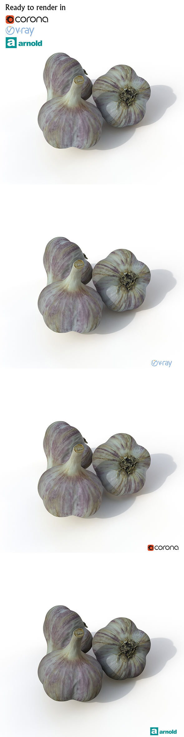 Garlic - 3DOcean Item for Sale
