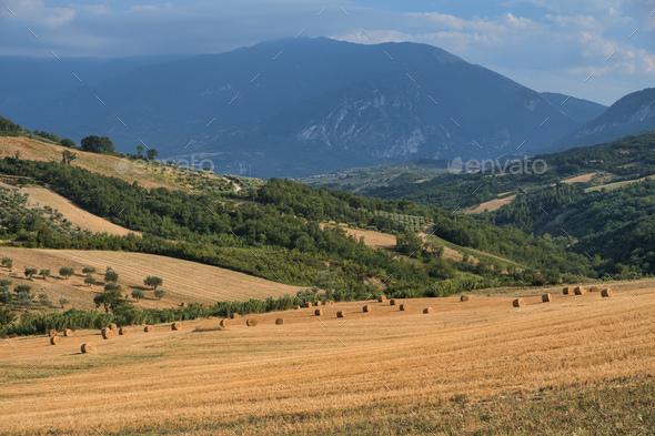 Summer landscape in Abruzzi near Pietranico - Stock Photo - Images