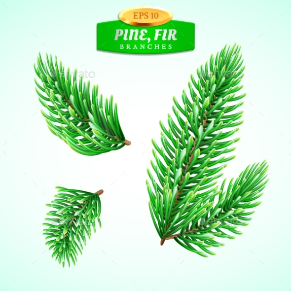 GraphicRiver Set of Fir Branches Christmas Tree 21094317