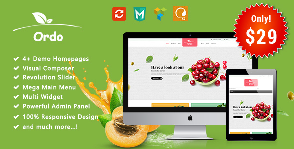 Image of Ordo - Organic Responsive WooCommerce WordPress Theme