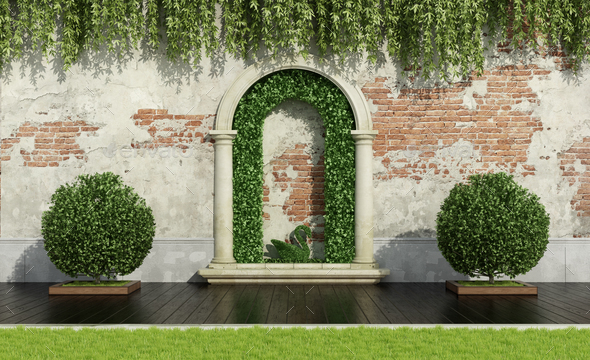 Garden with lush vegetation - Stock Photo - Images