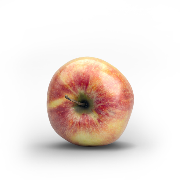 Photorealistic Fresh Red Green Apple - 3DOcean Item for Sale