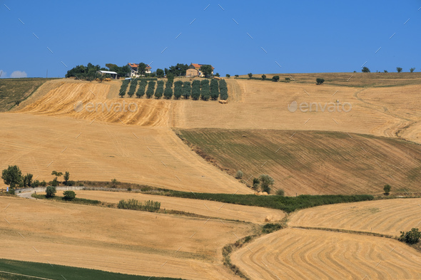 Landscape near Loreto Aprutino (Abruzzi) at summer - Stock Photo - Images