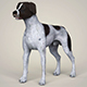 Realistic German Shorthaired Dog