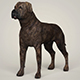 Realistic Mastiff Dog - 3DOcean Item for Sale