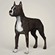Realistic American Staffordshire Dog - 3DOcean Item for Sale