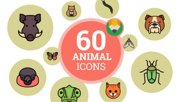 VideoHive Animal Wild Zoo Wildlife Nature Icon Set Flat Animated Icons 21098690