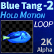 Blue Tang 2 - VideoHive Item for Sale