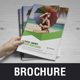 Multipurpose Brochure Catalog Design