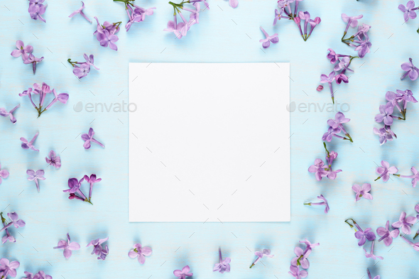 Blank greeting card and lilac flowers on blue background - Stock Photo - Images
