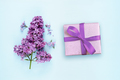 Lilac flowers and gift box on blue background - PhotoDune Item for Sale