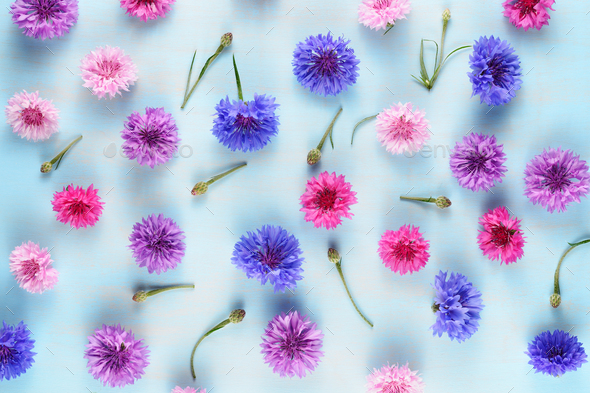 Floral background with cornflowers on blue - Stock Photo - Images