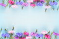 Cornflowers on blue background with copy-space - PhotoDune Item for Sale