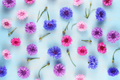 Floral background with cornflowers on blue - PhotoDune Item for Sale