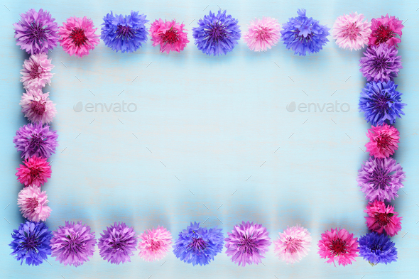 Flower frame of cornflowers on blue background - Stock Photo - Images