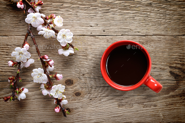 Apricot spring flowers and coffee cup on wooden background - Stock Photo - Images