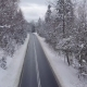 Paved Road Among Snowy Trees - VideoHive Item for Sale
