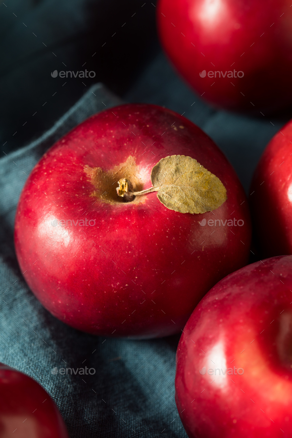 Red Organic Macintosh Apples - Stock Photo - Images