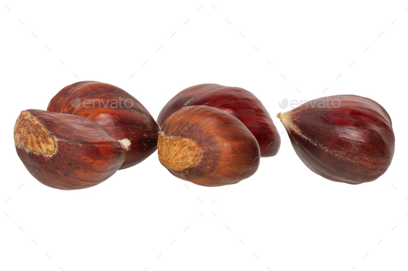Edible chestnuts on a white background - Stock Photo - Images