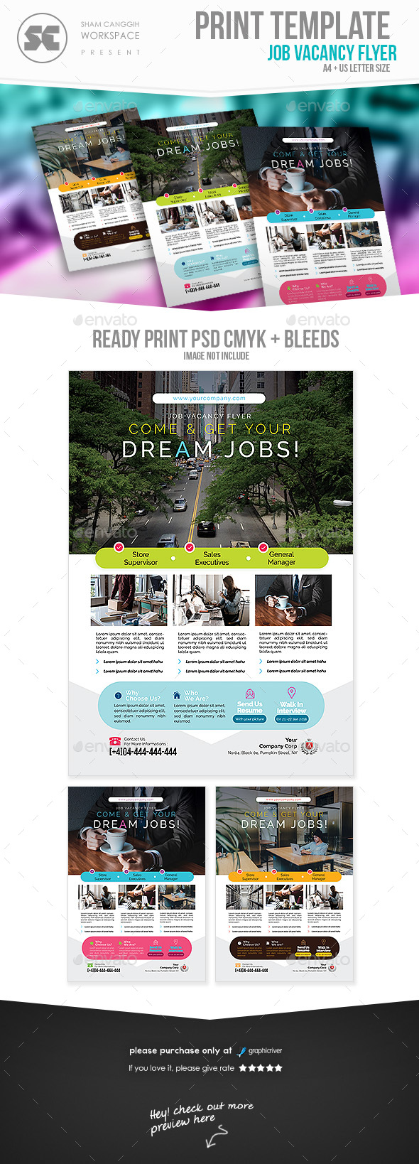 GraphicRiver Career Flyer 21107991