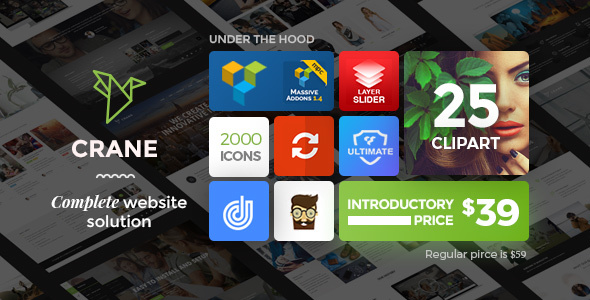 Crane - Responsive Multi-Purpose WordPress Theme - WordPress