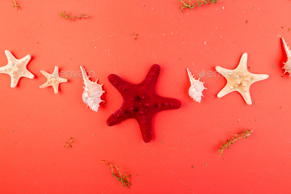 Red starfish background. Summer vacation concept. Flat lay. - Stock Photo - Images