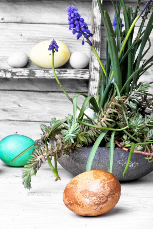 Colorful Easter eggs - Stock Photo - Images