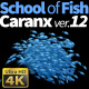 School of Fish Caranx-12 - VideoHive Item for Sale