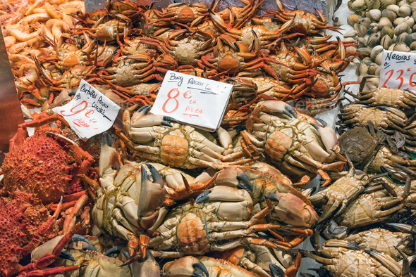 Crabs and other crustaceans for sale - Stock Photo - Images