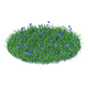 Grass with Cornflowers 3D Model