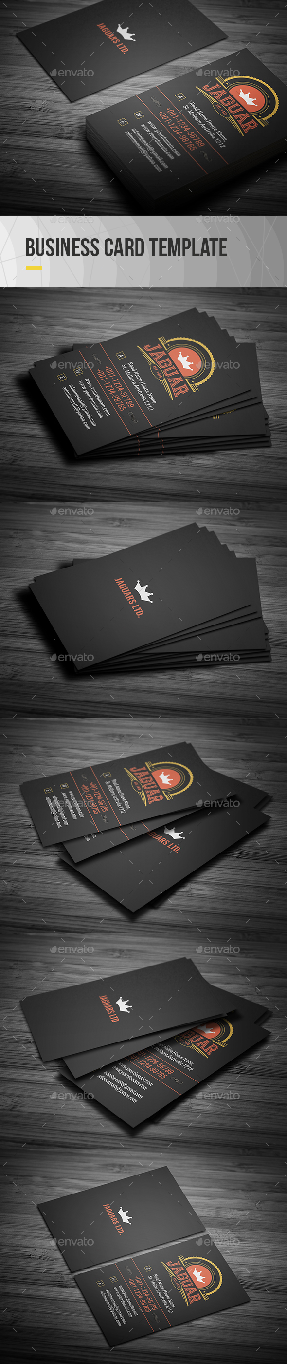GraphicRiver Vintage Business Card 21107976