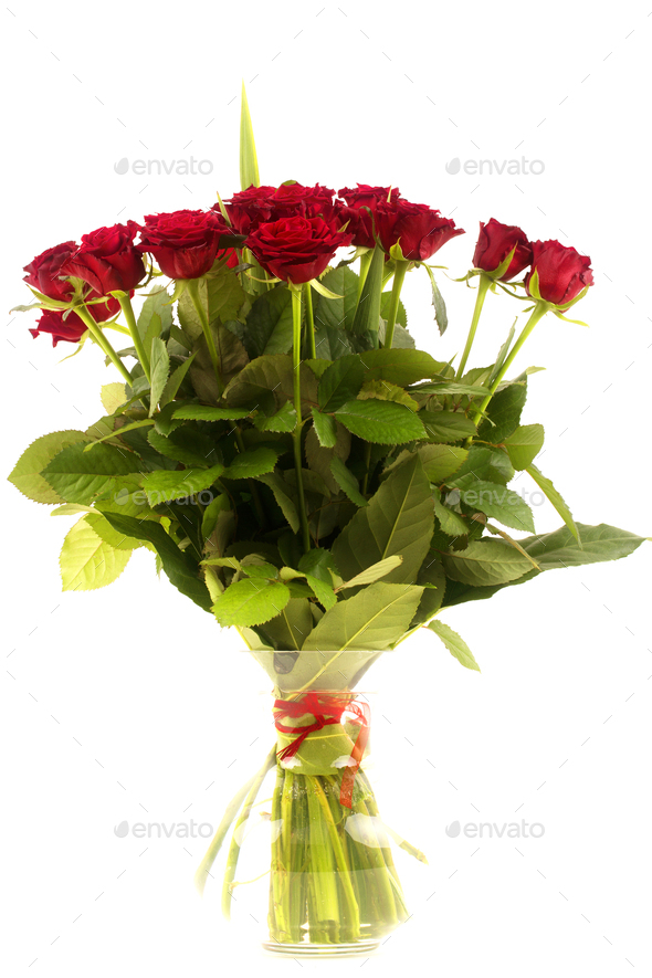 Red roses in vase  - Stock Photo - Images